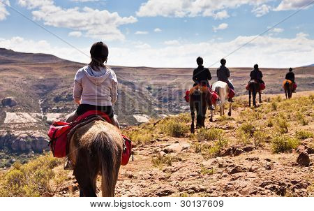 Pony Trail Adventure In The Mountains