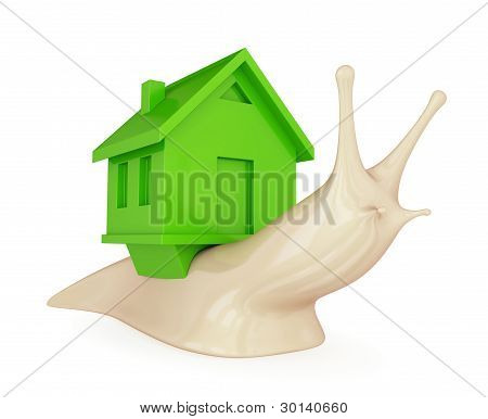 A snail with a green house on her back.