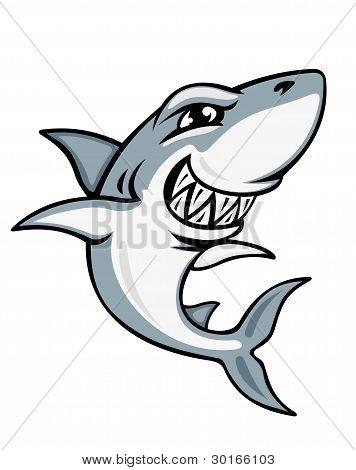 Cartoon Shark Mascot