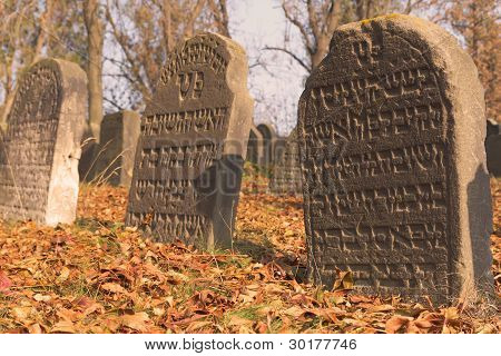 Jewish Cemetery In Libochovice (czech Republic)
