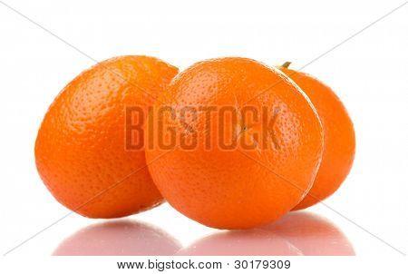 mineola fruits isolated on white