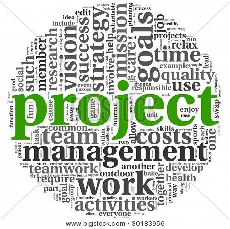 Project and management concept in word tag cloud on white background