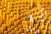 image of blunt  - One sharpened pencil among many blunt ones - JPG