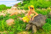 Elegant Lifestyle Tourist Woman With Sunhat Touches And Interacts With Aldabra Giant Tortoise, Aldab poster