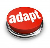 A red button with the word adapt on it, representing the desire to affect instant change and quickly