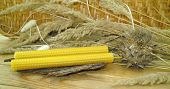 picture of taper  - the hand rolled natural beeswax candles taper - JPG