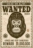 Gorilla Head Wanted Poster In Vintage Style Vector Illustration. Layered, Separate Grunge Texture An poster