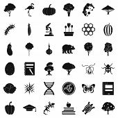 Fauna Environment Icons Set. Simple Set Of 36 Fauna Environment Icons For Web Isolated On White Back poster