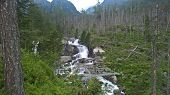 The Cold Brook Valley Is A Typical Glacier Valley. High Tatras poster