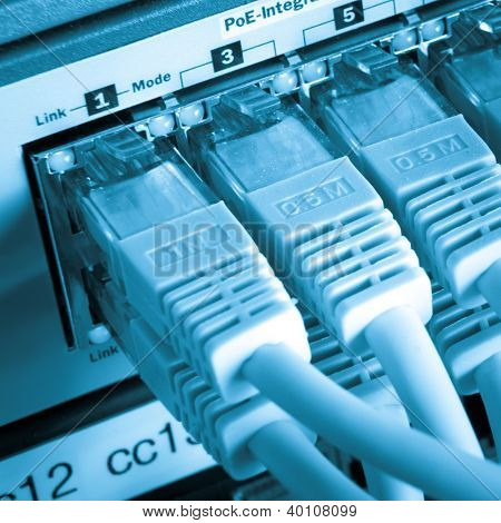 close up of network cables connected to switch