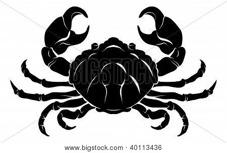 Stylised Crab Illustration
