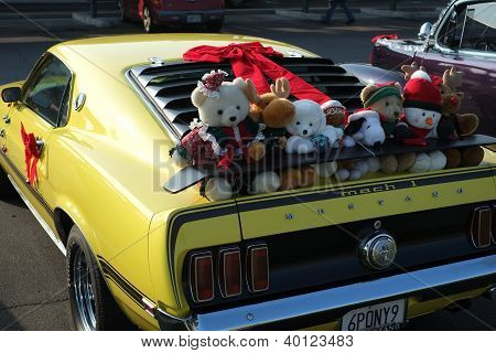 Stuffed Animals Go Riding