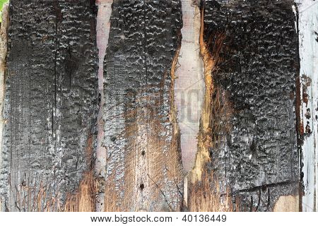 Old Wooden Background Of The Advice After Fire