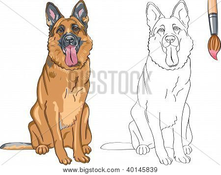 Vector Coloring Book Of Smiling Dog German Shepherd