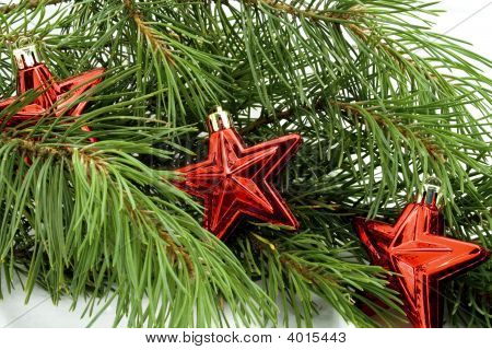Stars With Pine