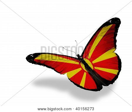 Macedonian Flag Butterfly Flying, Isolated On White Background