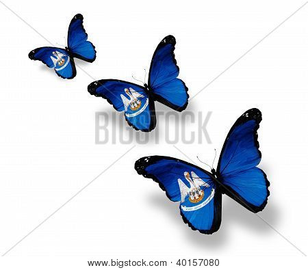 Three Louisiana Flag Butterflies, Isolated On White