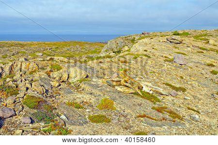 Barren Rock On The Atlantic Coast