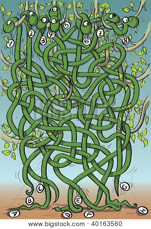 Funny Snakes on Trees Maze Game