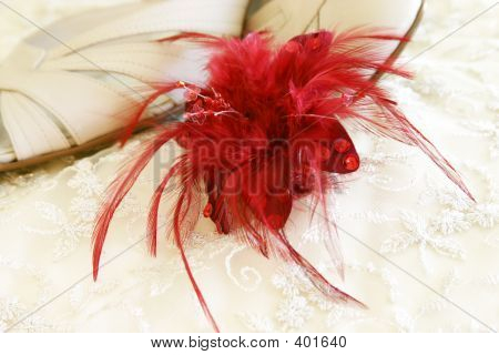 Red Feather Decoration