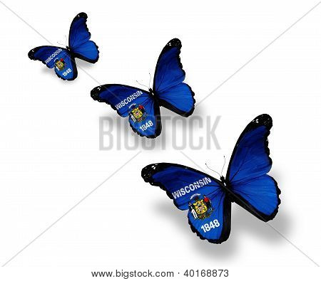 Three Wisconsin Flag Butterflies, Isolated On White