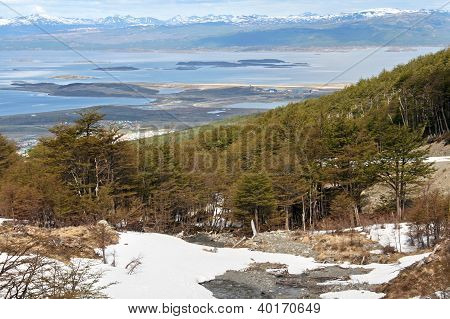 Beautiful landscape with snow and trees from Tierra del fuego