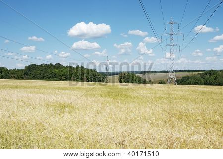 Electrical High Voltage Lines On The Wheat Field