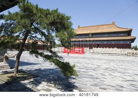 Forbidden City and tree in forefront