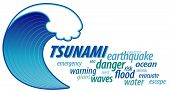 Tsunami Giant Wave, Word Cloud