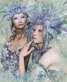 stock photo of faerie  - a portrait of two winter - JPG