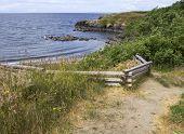 stock photo of split rail fence  - Fence and path leading to Grandma - JPG
