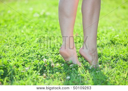 Female Legs Standing On Tiptoe On Green Grass. Close Up Body Parts