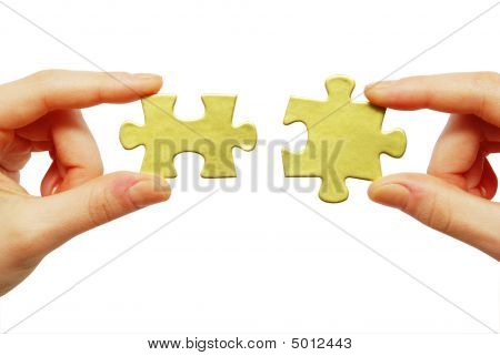Puzzle In Hands