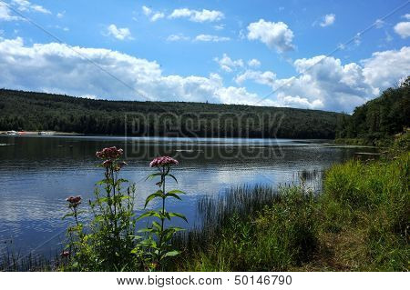 View to the mountain lake upstate NY at the summer time