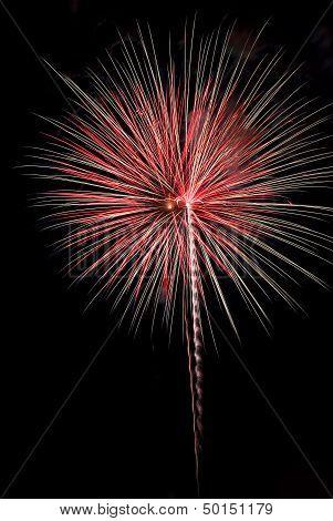 Red And White Fireworks Burst