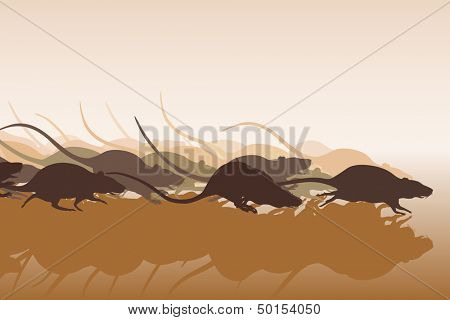 Editable vector illustration of many rats racing or running away