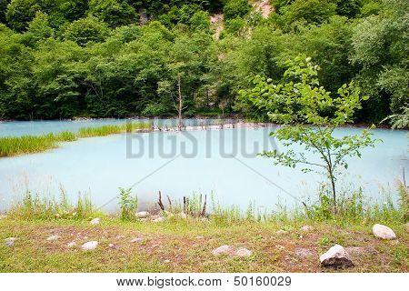 The Unique Turbid Lake