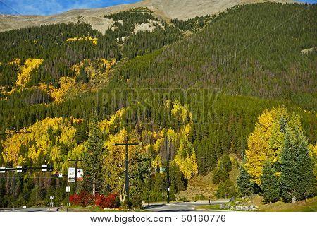 Colorado Aspen Hills