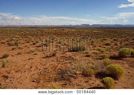 Northern Arizona Desert