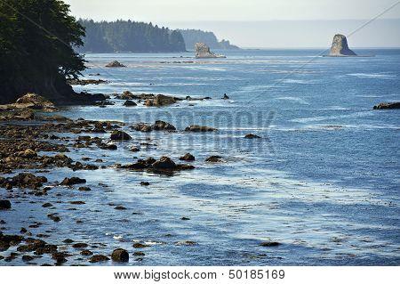 Salish Sea Coast
