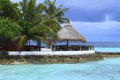 foto of dhoni  - Restaurant on the beach in the Maldives Indian Ocean - JPG