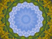 foto of colorado high country  - Kaleidoscopic Mandala created from a photo of Colorado high country in autumn - JPG