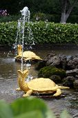 foto of samson  - Pair of turtle fountains in Petergof royal park - JPG