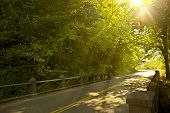 foto of paved road  - Oregon Road  - JPG