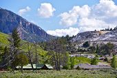 picture of mammoth  - Mammoth Hot Springs  - JPG