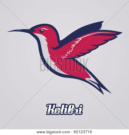 Hummingbird / Kolibri / Vector