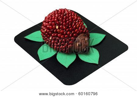 Toy Hedgehog Made From Plasticine And Beans Isolated On White