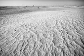 Dunes Of Sahara Black And White