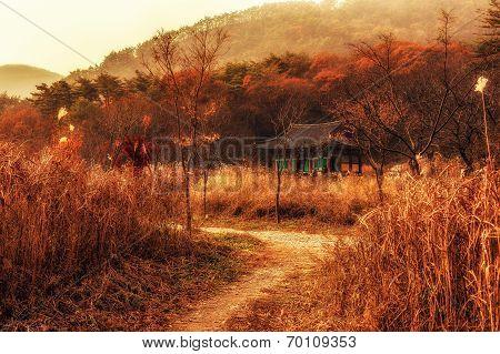 Temple scene in autumn