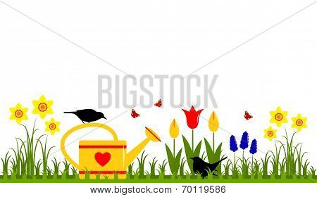 Spring Flowers And Watering Can